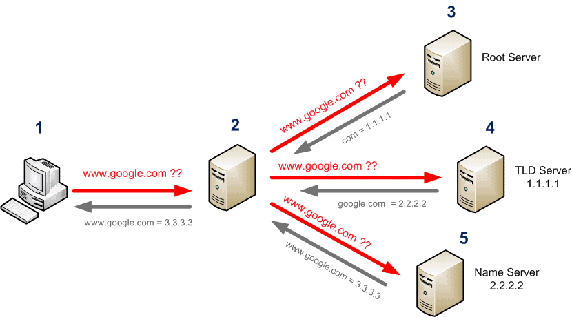 DNS / nslookup - How to find the root servers ?